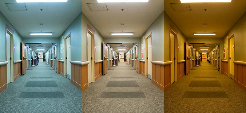 Circadian LED Lighting for Arvada Business Owners