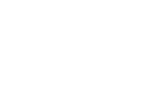 Demo Site